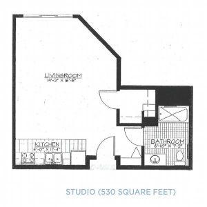 raleigh-hills-studio